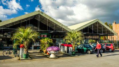 Al dertig bezwaren tegen bouw supermarkt op gronden Mampaey