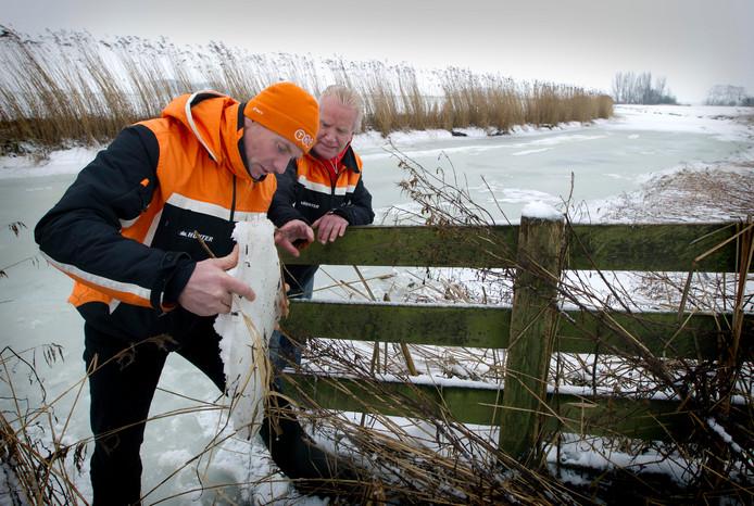 Henk Angenent, winnaar van de laatste Elfstedentocht in 1997, bekijkt woensdag op de Blikvaart in het Friese Finkum een stuk ijs met een laag sneeuw erop. (2010)