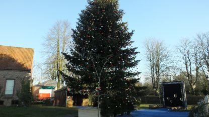 Warmste Kerstboom draagt 2.000 kerstballen