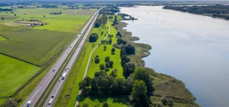 Rietmoeras en onderwaterbos: 'saai' niemandsland tussen Horst en Nulde wordt vogel-eldorado