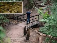 GLK buigt voor felle kritiek op stalen bruggetje Beek: karakteristieke houten leuning komt terug