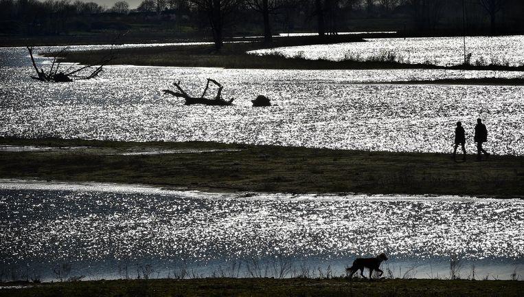 Rijkswaterstaat heeft in samenwerking met Natuurmonumenten de Hemelrijkse Waard heringericht en zogeheten boomriffen gecreëerd. Beeld Marcel van den Bergh / de Volkskrant