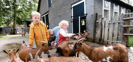 Goes sluit kinderboerderij zolang aangescherpte coronaregels van kracht zijn