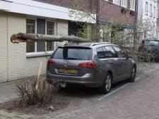 Boom waait om en belandt op auto in Boxtel