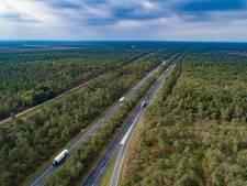 Voorlopig streep door massale bomenkap langs A28 tussen Wezep en Harderwijk