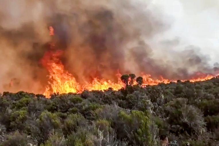 De brand op de Kilimanjaro op videobeeld. Beeld AP