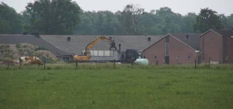 900 dode varkens aangetroffen in Winterswijk