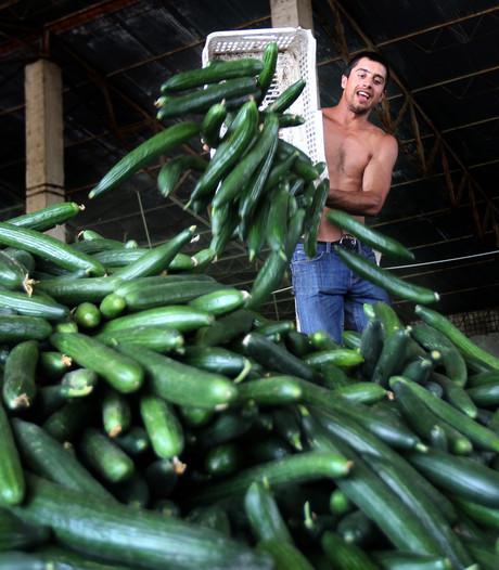 'Uitbuiting werknemers Midden- en Oost-Europa is businessmodel'