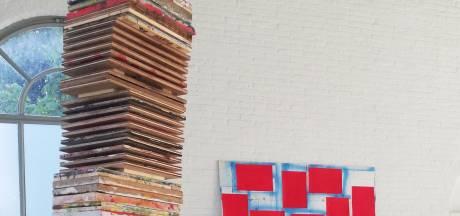 Kunstenaar Dave Meijer meandert tussen orde en chaos