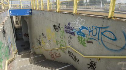 Graffitispuiter betrapt tijdens politieactie tegen transmigratie