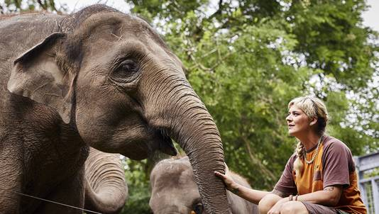 Olifantenverzorgster Sunny Blom met de toen nog hoogzwangere Bangka.