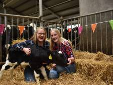 Zussen uit Linde starten kinderfeestjesbedrijf KoeKroelen: We krijgen zoveel reacties
