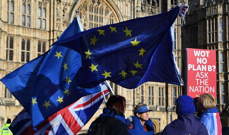 Pro EU campagnevoerders protesteren buiten bij het Britse Parlement in Londen. Beeld EPA