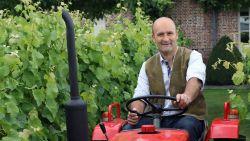 """De biotechnoloog die wijnboer werd: """"Zoals een boer al zijn koeien kent, ken ik al mijn wijnstokken"""""""