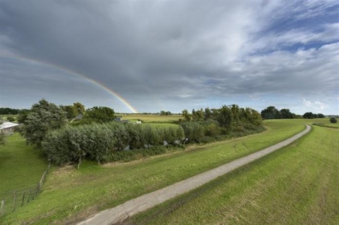 Uitzicht op de IJsseldijk. Tussen Zwolle en Olst moet de dijk worden versterkt.