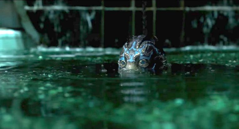 The Shape of Water. Beeld