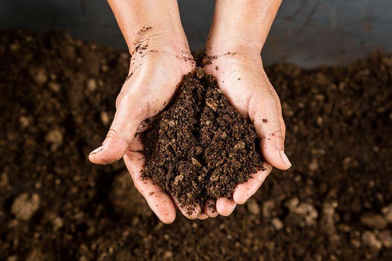 Zaaigrond is neutraal, terwijl aan potgrond meststoffen werden toegevoegd.