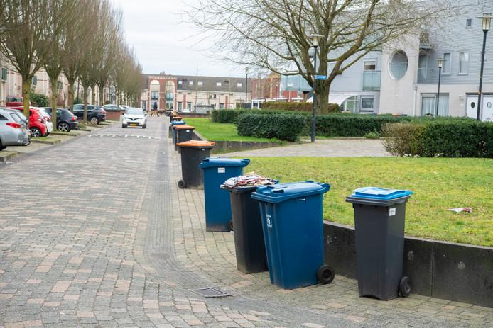 'Zwervende ' afvalcontainers aan Het Kasteel. Maandag was hier de ophaaldag van de oranje container. De blauwe container is pas aanstaande maandag aan de beurt,  maar die staan er ook.