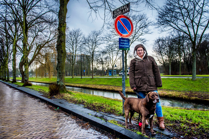 Bewoonster Nöelle laat elke dag haar hond Billy uit in de Generaal Spoorlaan. ,,Naam veranderen is overdreven. Het is zo lang geleden.''