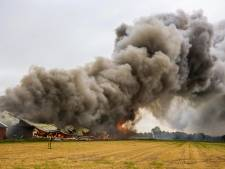 Stalbranden eisten dit jaar al ruim 100.000 dierenlevens