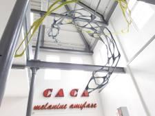 Expositie van 14 kunstenaars uit Berlijn in Cacaofabriek: 'Verplichte quarantaine heb ik er voor over'