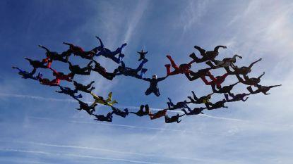 Officieus record gevestigd boven Moorsele: 34 parachutisten vormen zeldzame 'diamant'- formatie