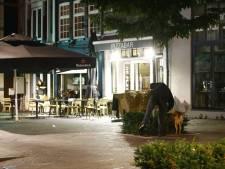 Personeel pizzeria in Zwolle rent na schietpartij overstuur naar binnen: 'Ze stonden naast ons terras'