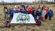 WWF-Rangerclub brengen bezoekje aan Berlaars moeras