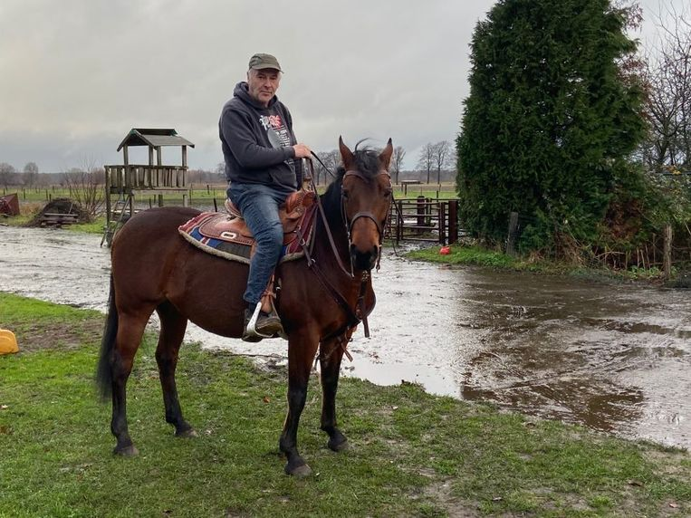 Paardenfluisteraar Patrick Kerkhofs op zijn 16-jarig paard Reminic.