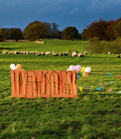 Acht jaar na stelen schapen dient hoger beroep; vrees dat schapendieven profiteren