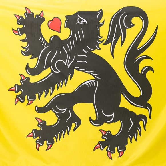 De nieuwe Vlaamse vlag van Noortje Palmers en Jasper Declercq heeft een hart in plaats van een tong.