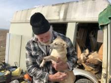 Ook de geliefde honden van Rudi Lubbers zijn nu gered, maar hoe nu verder?