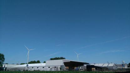 Gemeentebestuur wacht oordeel adviesraden af alvorens negatief advies te formuleren voor vier windmolens