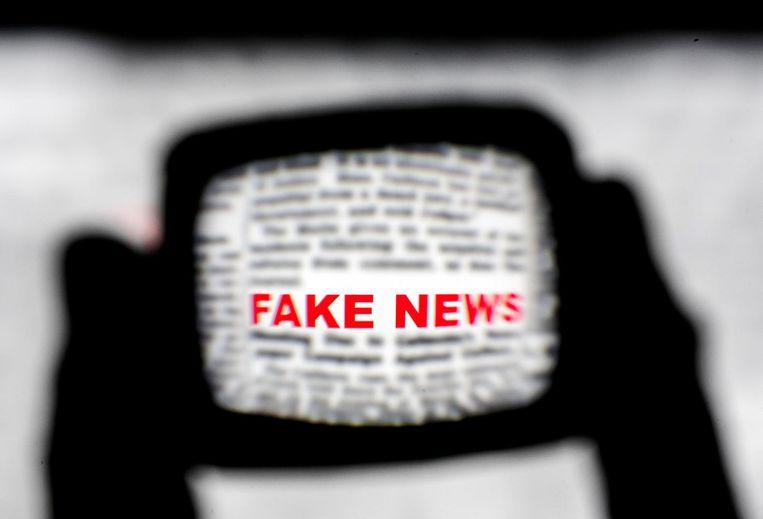 Pleijter: 'Als je mensen instrueert een tekst te lezen om de fouten erin op te sporen, dan vallen onjuistheden wèl op.' Beeld anp