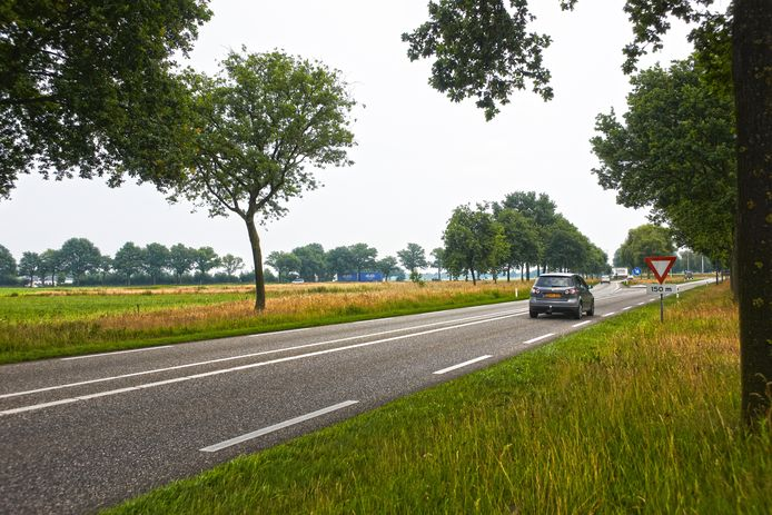 Op dit stuk grond, links van de rondweg Volkel, moet volgend jaar een groot zonnepark gerealiseerd zijn.