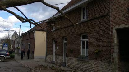 Storm die op 10 maart schade veroorzaakte in heel Steenokkerzeel, erkend als ramp