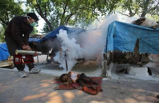 Autoriteiten proberen met rook de muskieten te verdrijven