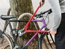 Hondsbrutale dief pikt fiets van oprit, maar komt niet ver