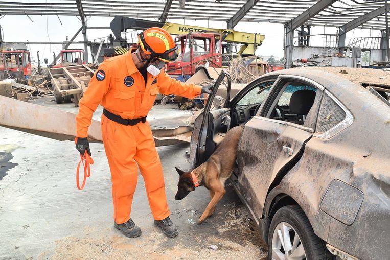 Een lid van de reddingsploeg Urban Search and Rescue (USAR) in de haven van Beiroet. Het team zoekt naar overlevenden, drie dagen na een verwoestende explosie in de Libanese hoofdstad. Beeld ANP