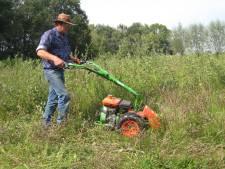Plantsoenendienst aangevallen vanwege lawaai snoeimachine: 'Nog nooit meegemaakt'