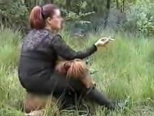 Politie neemt mishandelde pony's in beslag