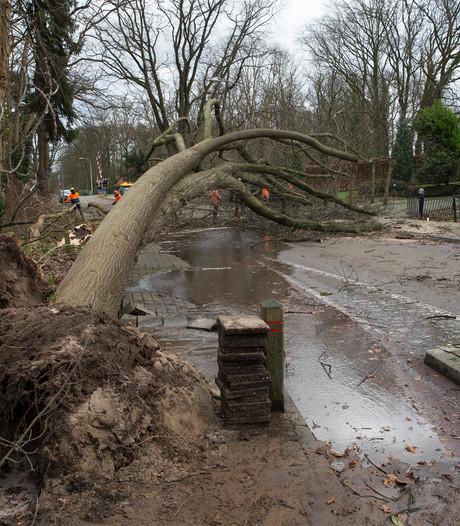 Zeker twee miljoen euro stormschade in Achterhoek