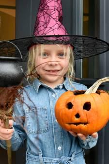 Halloween nadert: bewoners in Woerden versieren tuin met pompoenen