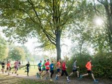 Vallende bladerenloop: Tussendoortje voor talent