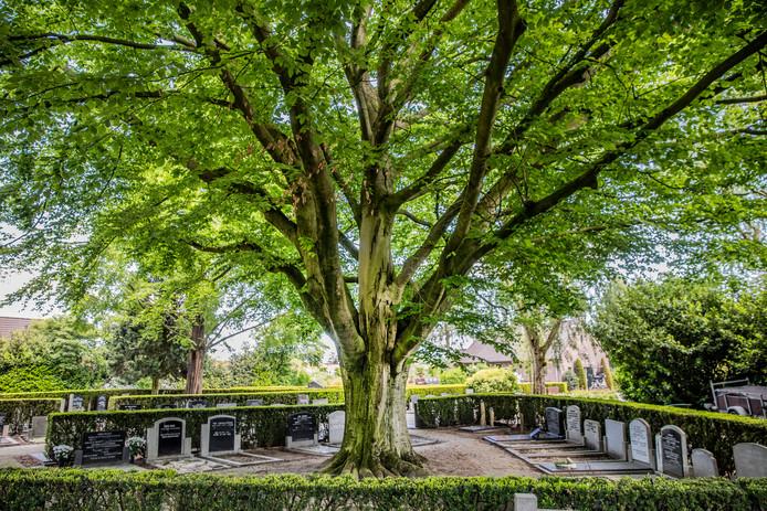 Van deze begraafplaats in Nijkerk stalen dieven spullen van een graf. En dat is geen uitzondering.