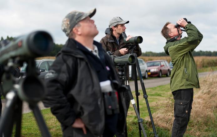 Leden van Vogelwacht Uden volgen op de Maashorst jaarlijks de vogeltrek.