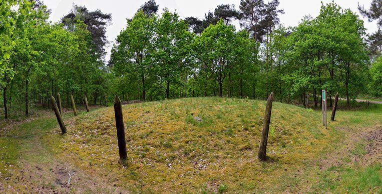 De Grafheuvels in Hamont-Achel.