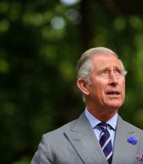 Prins Charles lijkt verwend en lui, maar hij werkt zich uit de naad