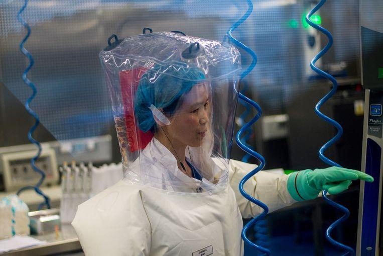 De Chinese virologe Shi Zhengli in 2017 in het Wuhan Virology Institute, waar gevaarlijke virussen onderzocht worden. Het lab heeft de hoogste bioveiligheidsgraad P4. Beeld AFP