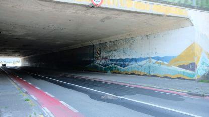 Invalsweg krijgt opfrisbeurt met muurschildering op tunnelmuren